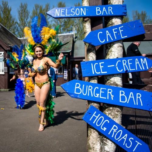 Festival blue signs