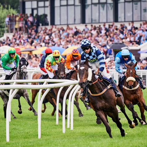 1 Perth Gold Cup 2018