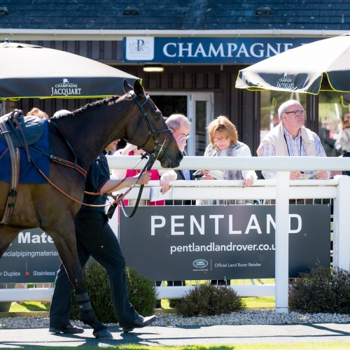 Pentland Gold Cup Raceday Preview