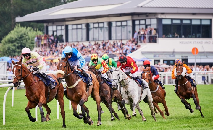 Racing News and Horse Fixture Reviews From Perth Racecourse